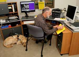 Man Using Computer, dog guide at his feet
