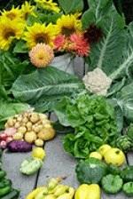 a range of vegetables