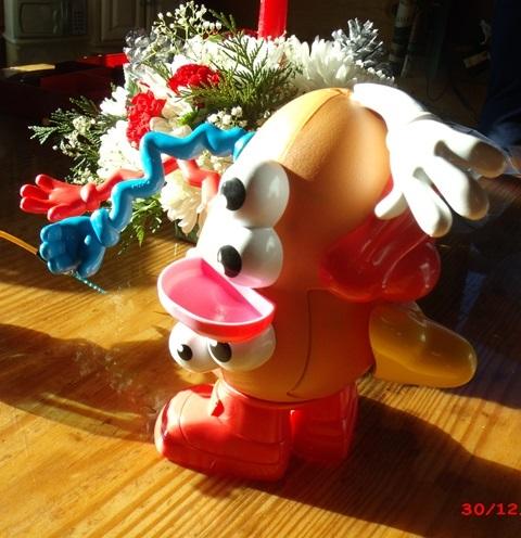 Mr Potato Head oddly put together