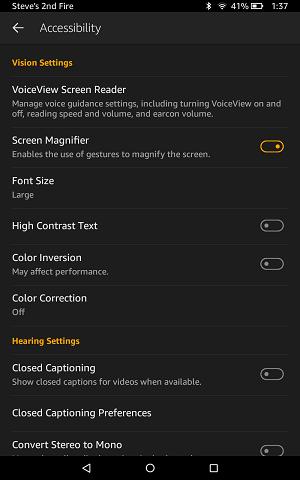 screenshot of kindle accessibility screen