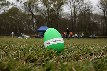 Beeping Easter Egg in an empty field