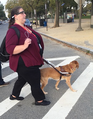 woman using guide dog walking across street and wearing aira glasses