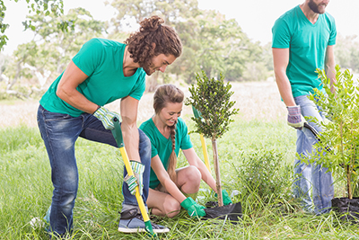 Three teens planting trees outside for the community garden