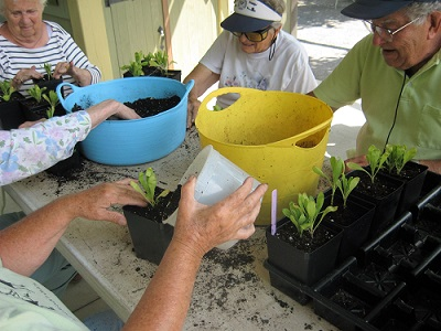 boothbay support group sitting around table potting plants