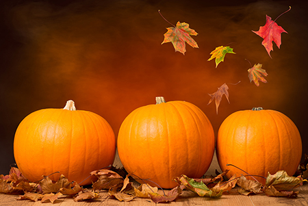 Three pumpkins lined up with fall leaves in front of an orange background