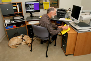 man sitting at an l-shaped desk reading a file with a guide dog at his feet